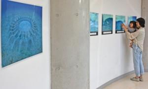 アマミホシゾラフグの不思議な生態を捉えた作品が並ぶ写真展=1日、奄美市名瀬の奄美海洋展示館