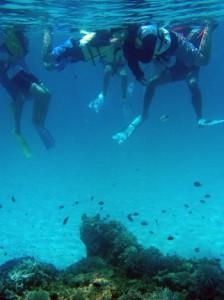 「ケラマブルー」と呼ばれる慶良間諸島の海の中を観察したこども環境調査隊の活動3日目=27日、渡嘉敷島