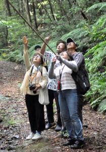 林道に生息する動植物や昆虫などの特徴に理解を深めた受講生ら=26日、天城町三京