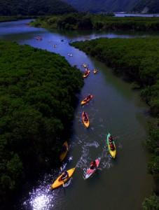 マングローブの中をカヌーで巡った参加者=27日、奄美市住用町(本社小型無線機で撮影)