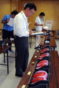 32点を審査した第3回奄美大島・喜界島マンゴー品評会=3日、奄美市