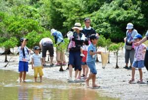 実物を間近に見ながら植物や生き物について学んだ親子自然教室=27日、奄美市住用町
