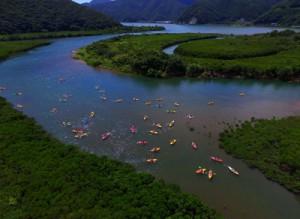 マングローブ林をカヌーで巡り奄美の自然を楽しむ観光客ら=8月27日、奄美市住用町