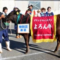 グランドチャンピオン牛「ひなた」と出品者の叶敏典さん(左)=16日、与論町