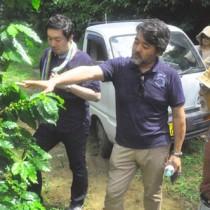 コーヒー農園を視察する石井シェフら(写真中央)=29日、伊仙町伊仙