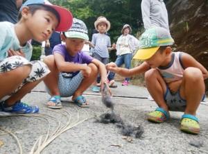 アマミノクロウサギの幼獣とみられる死骸を観察する子どもたち=3日、天城町与名間