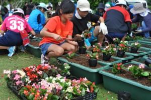 両陛下の来島に向けてプランターに花を植える子どもら=15日、和泊町