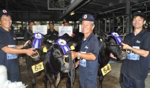 グランドチャンピオンに輝いた伊仙チームの出品牛3頭(左から)そら、はるこ、れお=19日、与論町