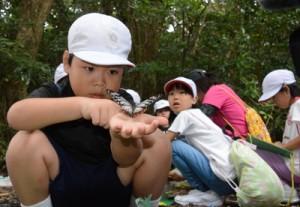 捕獲場所や日付などをマークしたアサギマダラを放す児童=7日、龍郷町の自然観察の森
