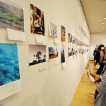 それぞれが撮った写真86枚を見比べる学生ら=23日、田中一村記念美術館