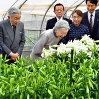 農業用ハウスで平さん(左)から説明を受ける天皇、皇后両陛下=18日午前10時22分、知名町赤嶺(代表撮影)