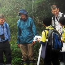 奄美大島で行われたIUCNの現地調査。評価は来年夏の世界自然遺産登録の鍵を握る=10月13日、大和村の湯湾岳登山道入り口
