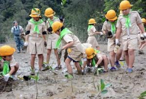 メヒルギの苗木を植える田検小の児童ら=7日、宇検村湯湾
