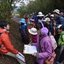 林道脇の獣道を観察する参加者ら(上)とアマミノクロウサギのふんを確認して記録した調査体験=23日、大和村