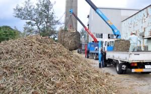 25年ぶりの年内操業を開始した与論島製糖の工場に運び込まれるサトウキビ=15日、与論町
