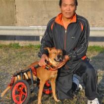 車いす犬ラッキーと島田さん