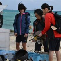 回収した漂着ごみを拾い箱に入れるウォーキング参加者=17日、与論町