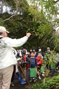 植物の説明を聞く「子ども博物学士」の受講生ら=20日、龍郷町の奄美自然観察の森