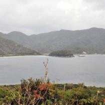 大型クルーズ船寄港地誘致が検討されている瀬戸内町西古見集落。手前の湾が候補地=9日
