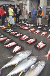 名瀬漁協の初競り=5日、奄美市名瀬
