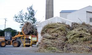キビの搬入・製糖作業が行われている与論島製糖㈱与論事業所=7日、与論町