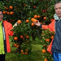 鮮やかに色づいたタンカンを手に、収穫シーズンの始まりを祝う大海部会長(右)と園主の内山さん=1日、龍郷町大勝