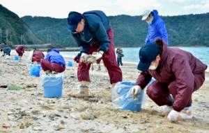 油の回収を行う県職員ら=8日、奄美市名瀬の朝仁海岸