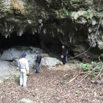 県指定文化財として県教委に答申された知名町久志検の中甫洞穴(県教育委員会提供)
