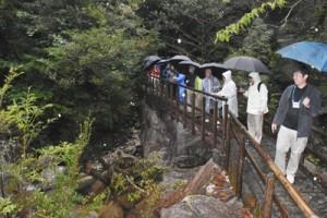 屋久島の観光名所「白谷雲水峡」を見学する奄美の観光関係者=5日、屋久島町