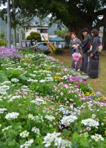大島紬に身を包み花を楽しむ参加者=15日、龍郷町の赤尾木教会