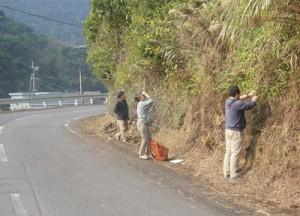 奄美大島でのモニタリング調査(環境省奄美自然保護官事務所提供)