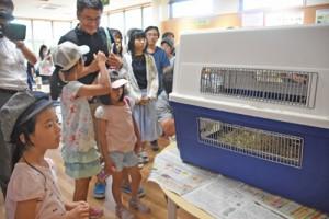 かごに入ったケンタを観察する子どもたち=19日、鹿児島市の平川動物公園