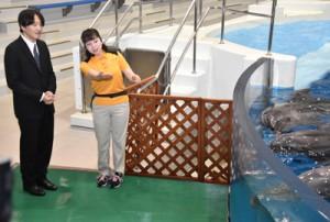 イルカについて説明を受ける秋篠宮さま(左)=17日、鹿児島市のかごしま水族館