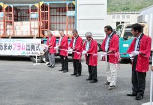テープカットで出荷開始を祝った出発式=6日、大和村のJAあまみ湯湾釜選果場