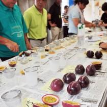 品質と生産技術の向上を目的に開かれたパッションフルーツ果実分析検討会=13日、瀬戸内町