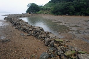 木慈集落の垣漁跡