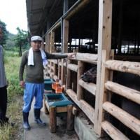 丸太での牛舎柵造りを進めている(左から)里山太一さんと岩切哲さん=18日、瀬戸内町勝浦