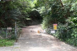 来年4月から試行、来年夏に本格的な通行規制が始まる林道山クビリ線=26日、徳之島町山