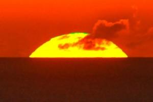 太陽の頂に輝くグリーン=17年9月、奄美市名瀬大熊