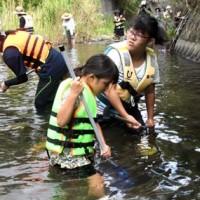 川の生き物を観察し、自然の豊かさを体感する参加者=18日、天城町三京