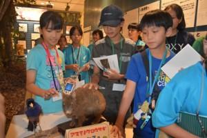 アマミノクロウサギの生態などを学んだ「奄美こども環境調査隊」の隊員たち=24日、奄美市名瀬の市立奄美博物館