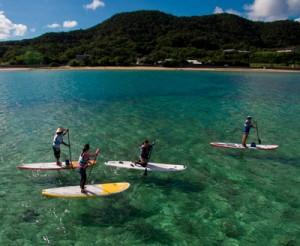 スタンドアップパドルで奄美の海を満喫する旅行者ら=15日、龍郷町芦徳(本社無人機で撮影)