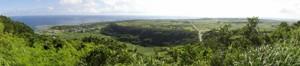 アリモドキゾウムシ根絶事業が展開されている喜界島