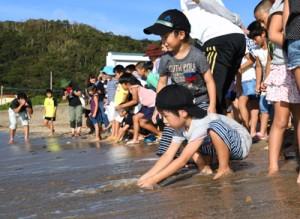 子ガメを海に放す児童ら=24日、奄美市笠利町屋仁
