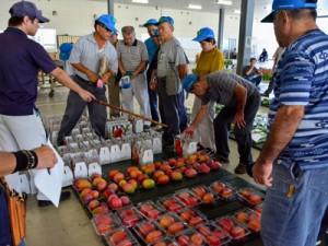 奄美大島産の果物や野菜を中心に競りが開かれた名瀬中央青果=23日、奄美市名瀬