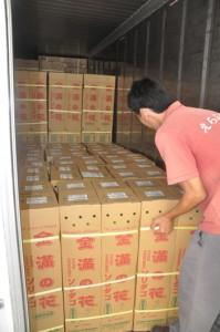 出荷用の花きを大量に詰め込んだコンテナ=24日、和泊町の沖永良部花き専門農協