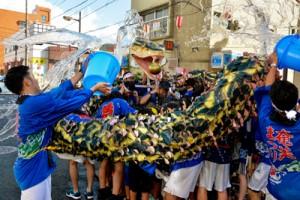 子どもたちを巻き込んだハブに威勢よく水を掛け、景気を付けるハブ隊=5日、奄美市名瀬