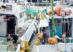 漁船同士をつなぎ留め台風に備える漁師=10日、名瀬漁港