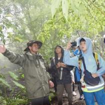 沖縄本島北部・やんばる地域の森で植物などを観察した奄美こども環境調査隊の隊員ら=1日、沖縄県国頭村