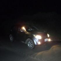夜間の林道でパトロールを行う環境省の関係者=8月、奄美大島(環境省奄美自然保護官事務所提供)